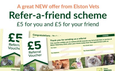 Awesome Offer: Get £5 voucher when you refer friends to Elston Vets